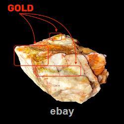 481 GRAMS / 16.97oz RARE Australian Gold Bearing Quartz Specimen Victoria